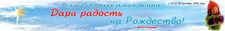 Акция Дари радость на Рождество, г.Челябинск, 2018 год, храм преп.Сергия Радонежского
